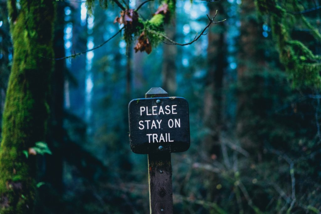 "A sign in the forest that says ""please stay on trail."""