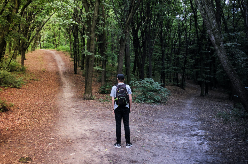 A person standing at a crossroad in a forest.